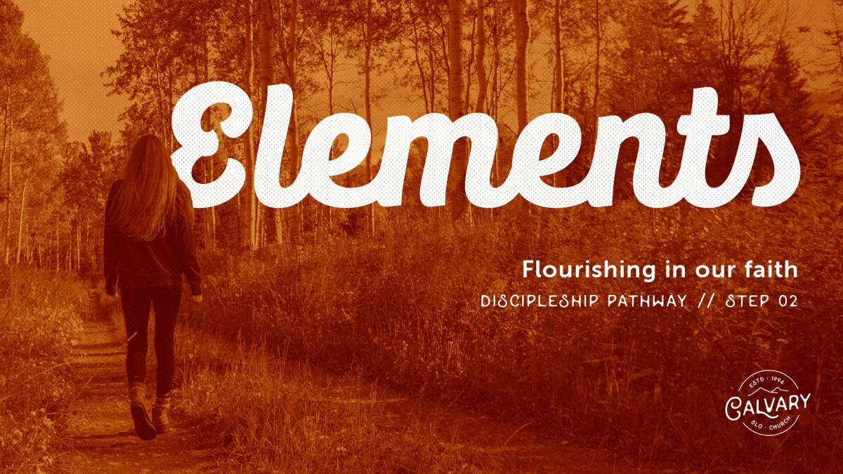 Elements –Discipleship Pathway // Step 02